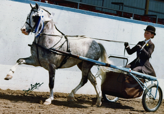Silver stallion tammy and heidi cam show 2 4